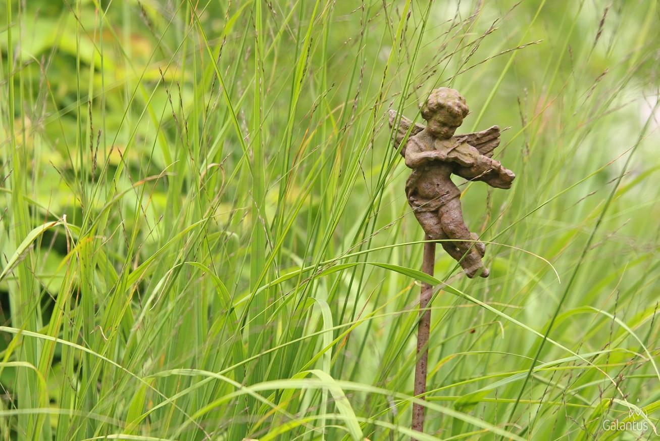Jardins d'Angelique, galantus dārzi, idejas dārzam
